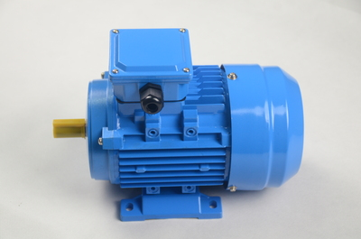 Three phase induction motor(MS series)