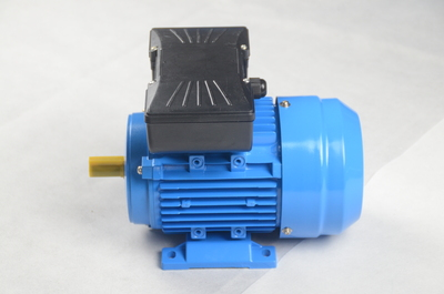 single phase induction motor(ML  series)
